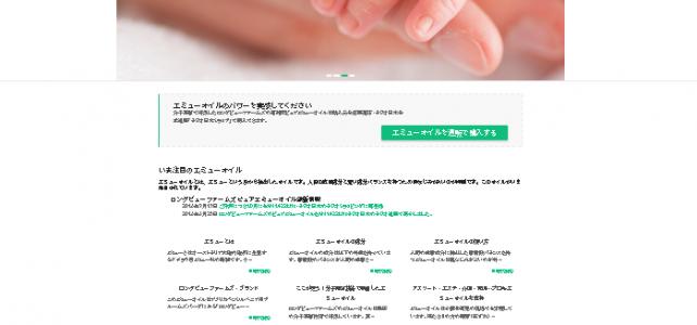 ホームページ制作事例(2016年9月・横浜市・ブランドサイト)